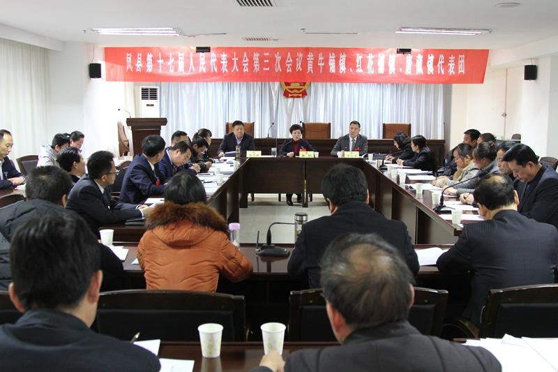 张帆、辛元平在十七届人大三次会议上参加小组讨论