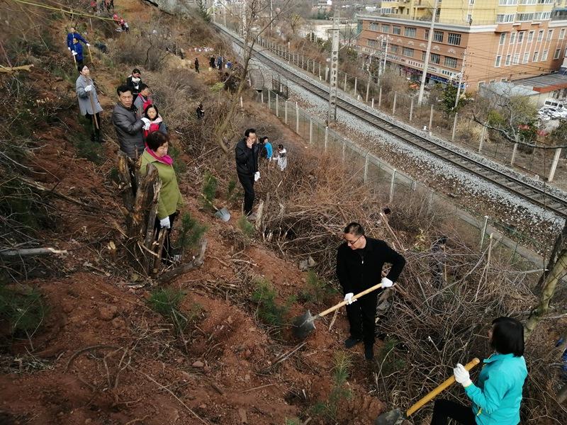 参加文明实践我参与、绿色家园我来建植树活动